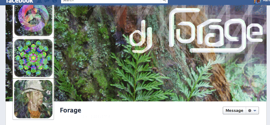facebook-timeline-forage-variations