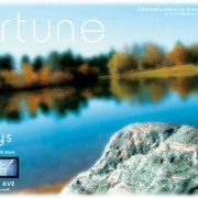 fortune_friday___october_by_soulus