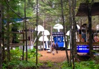 Future Forest – Fredricton NB