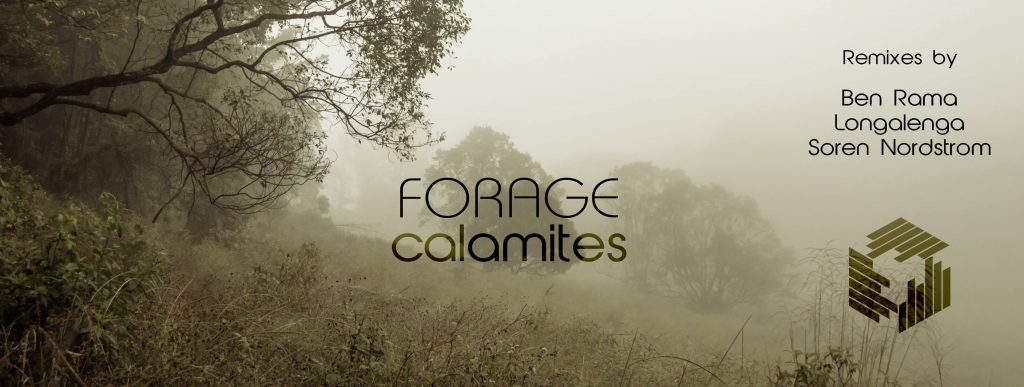 forage - calamites EP - techgnosis recordings - featuring remixes by ben rama and soren nordstrom