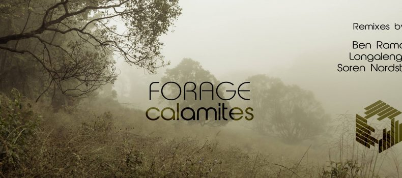 Calamites EP – Forage – Techgnosis recordings