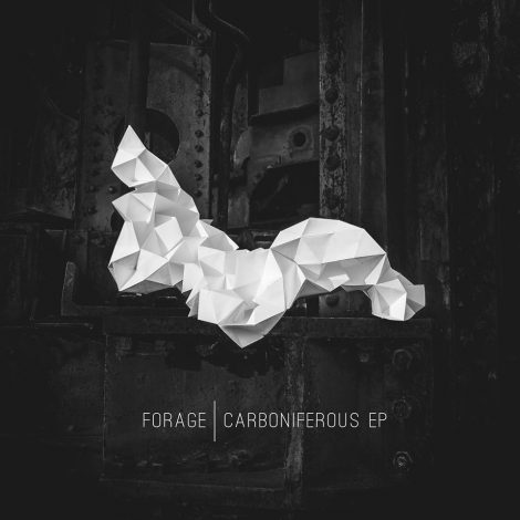 Carboniferous EP – forage